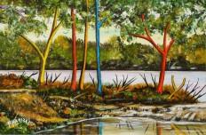 Paysages, au bord de l'eau